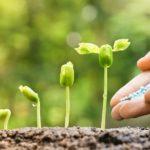 The Growing Network: come far crescere le persone e le aziende